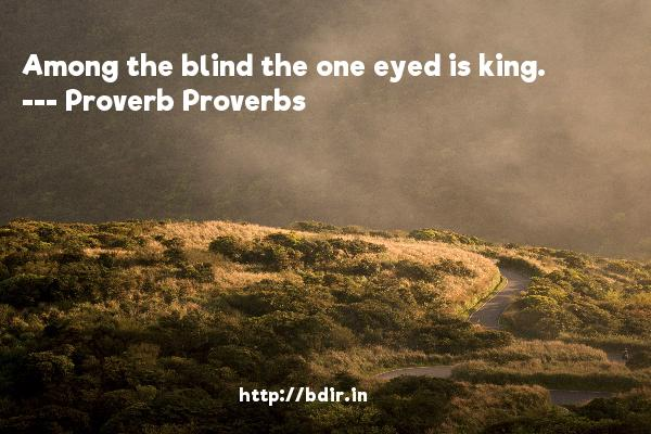 Among the blind the one eyed is king.  -   Proverb Proverbs     Quotes