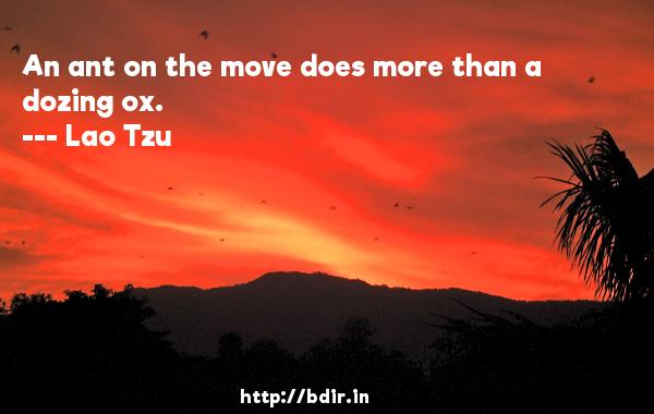 An ant on the move does more than a dozing ox.  -   Lao Tzu     Quotes