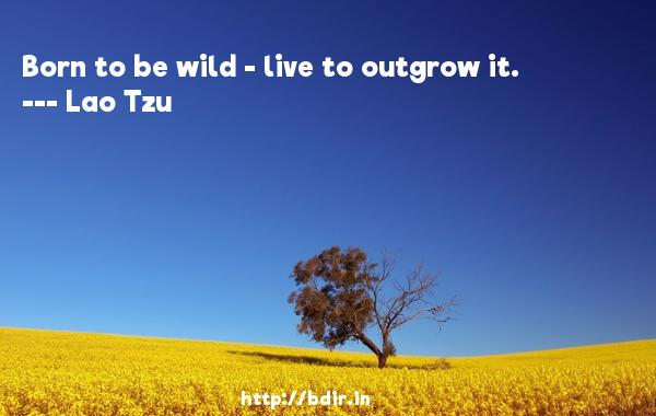 Born to be wild - live to outgrow it.  -   Lao Tzu     Quotes