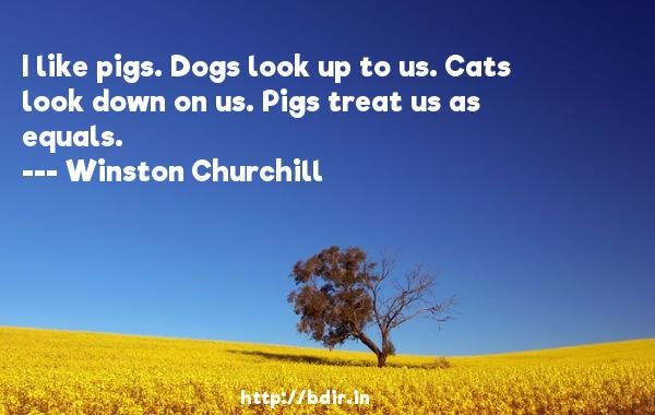 I like pigs. Dogs look up to us. Cats look down on us. Pigs treat us as equals.  -   Winston Churchill     Quotes