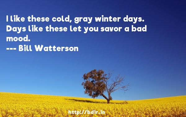 I like these cold, gray winter days. Days like these let you savor a bad mood.  -   Bill Watterson     Quotes