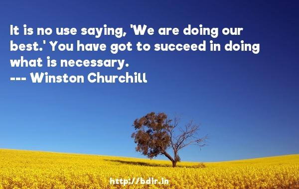It is no use saying, 'We are doing our best.' You have got to succeed in doing what is necessary.  -   Winston Churchill     Quotes