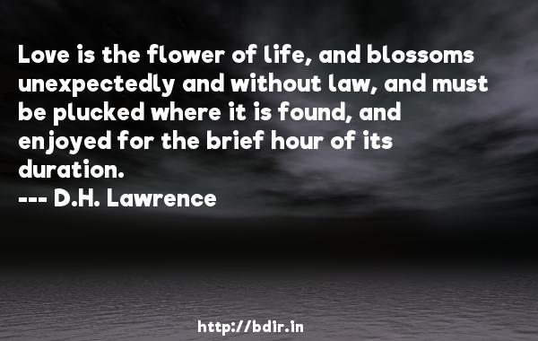 Love is the flower of life, and blossoms unexpectedly and without law, and must be plucked where it is found, and enjoyed for the brief hour of its duration.  -   D.H. Lawrence     Quotes