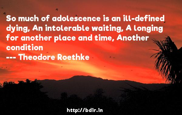 So much of adolescence is an ill-defined dying, An intolerable waiting, A longing for another place and time, Another condition  -   Theodore Roethke     Quotes