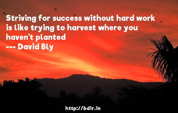 Striving for success without hard work is like trying to harvest where you haven't planted  -   David Bly     Quotes