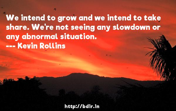 We intend to grow and we intend to take share. We're not seeing any slowdown or any abnormal situation.  -   Kevin Rollins     Quotes
