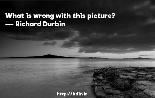 What is wrong with this picture?  -   Richard Durbin     Quotes