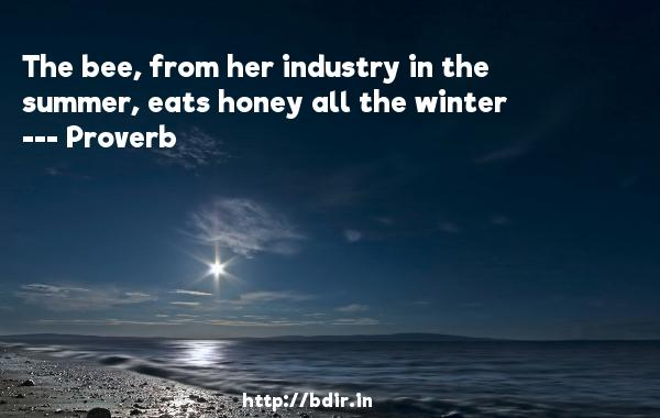 The bee, from her industry in the summer, eats honey all the winter  -   Proverb      Quotes