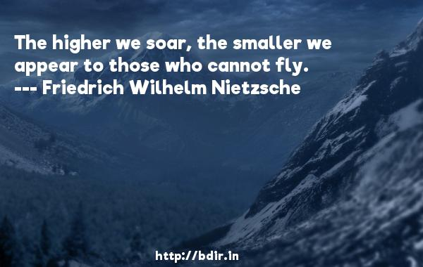 The higher we soar, the smaller we appear to those who cannot fly.  -   Friedrich Wilhelm Nietzsche     Quotes