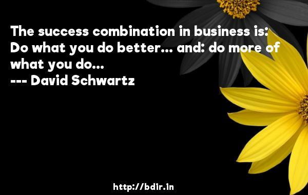 The success combination in business is: Do what you do better... and: do more of what you do...  -   David Schwartz     Quotes