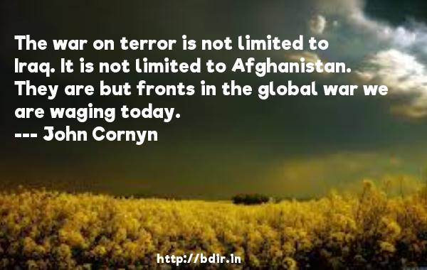 The war on terror is not limited to Iraq. It is not limited to Afghanistan. They are but fronts in the global war we are waging today.  -   John Cornyn     Quotes