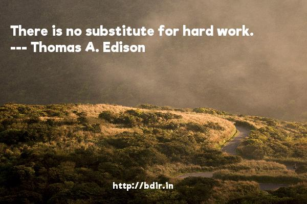 There is no substitute for hard work.  -   Thomas A. Edison     Quotes