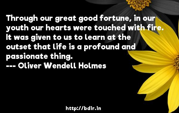 Through our great good fortune, in our youth our hearts were touched with fire. It was given to us to learn at the outset that life is a profound and passionate thing.  -   Oliver Wendell Holmes     Quotes