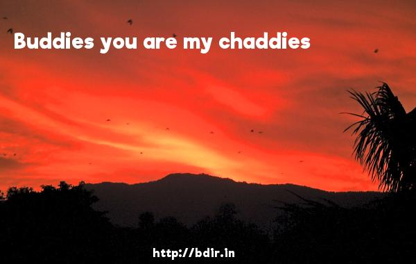 Buddies you are my chaddies - Chashme Baddoor (2013)