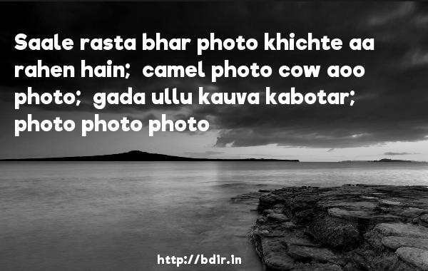 Saale rasta bhar photo khichte aa rahen hain;  camel photo cow aoo photo;  gada ullu kauva kabotar;  photo photo photo - Band Baaja Baaraat